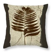 Palm Fossil Sandstone  Throw Pillow