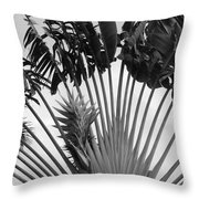 Palm Frons Throw Pillow
