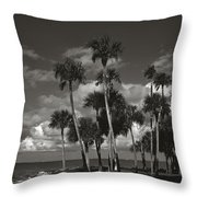 Palm Group In Florida Bw Throw Pillow