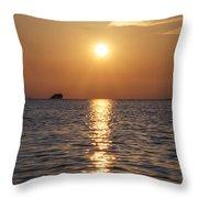 Palm Harbor Florida Throw Pillow