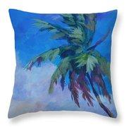 Palm In Evening Light Throw Pillow