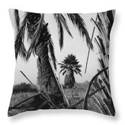 Palm In View Bw Horizontal Throw Pillow