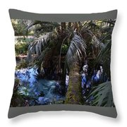 Palm Over A Boil Throw Pillow