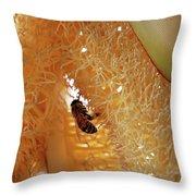 Palm Pollination Throw Pillow