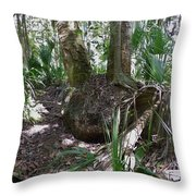 Palm Roots Throw Pillow