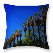 Palm Row Throw Pillow