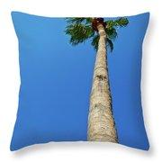 Palm Tree Against Blue Sky Throw Pillow