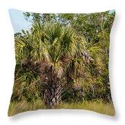 Palm Tree In Golden Grass Throw Pillow