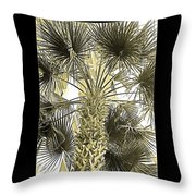 Palm Tree Pen And Ink Grayscale With Sepia Tones Throw Pillow