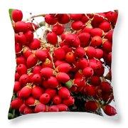 Palm Tree Seeds Throw Pillow