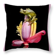 Palm Treefrog On A Banana Flower Throw Pillow