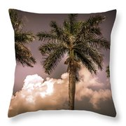 Palm Trees Against Beautiful Sky Throw Pillow