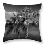 Palm Trees In Black And White At Laguna Beach Throw Pillow