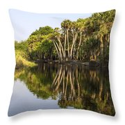 Palm Trees Reflections Throw Pillow