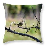 Palm Warbler Greetings Throw Pillow