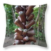 Palm Wine Gourds Throw Pillow