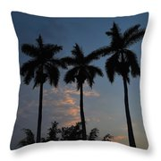 Palmeras Ahuachapan Throw Pillow