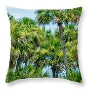 Palmetto Palm Trees In Sub Tropical Climate Of Usa Throw Pillow