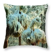 Palmetto Row Throw Pillow