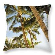 Palms Against Blue Sky Throw Pillow