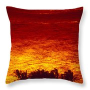 Palms And Reflections Throw Pillow