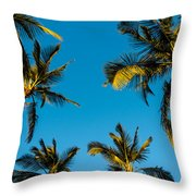 Palms And Sky Throw Pillow