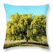 Palo Verde Throw Pillow