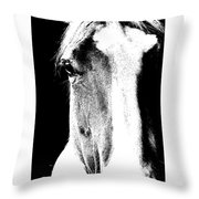 Palomino Art Throw Pillow