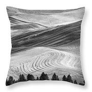 Palouse Field 2740 Throw Pillow