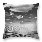 Palouse Field 2918 Throw Pillow