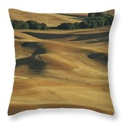 Palouse Patchwork By Jean Noren Throw Pillow