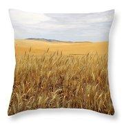 Palouse Wheat Fields Throw Pillow