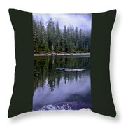 Pamelia Lake Reflection Throw Pillow