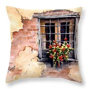 Pampa Window Throw Pillow