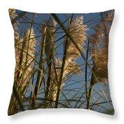 Pampas Grass At Sunset Throw Pillow