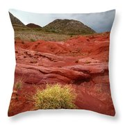 Pampas Grass In The Desert Torotoro National Park Bolivia Throw Pillow