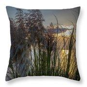 Pampas Grass Sunset Throw Pillow