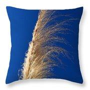 Pampas  Throw Pillow