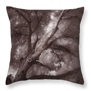 Pams Tree  Two B And W Throw Pillow
