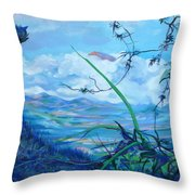 Panama. Anton Valley Throw Pillow
