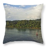 Panama011 Throw Pillow