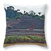 Panama056 Throw Pillow
