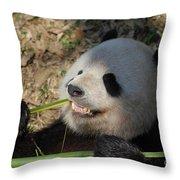 Panda Bear Showing His Teeth As He Munches On Bamboo Throw Pillow