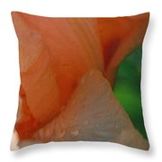 Panel One From Iris Throw Pillow