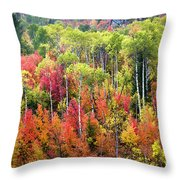 Panoply Of Autumn Color Throw Pillow