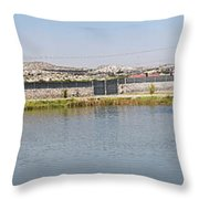Panorama Of A Pond Throw Pillow