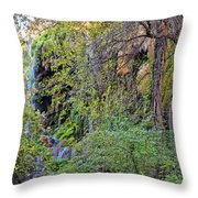 Panorama Of Gorman Falls At Colorado Bend State Park - Lampasas Texas Hill Country Throw Pillow