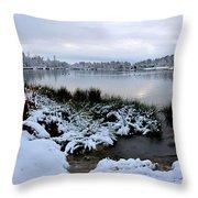 Panorama Of Winter Lake Throw Pillow