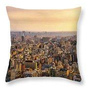 Panoramic Barcelona Throw Pillow