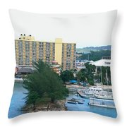 Panoramic Coast Throw Pillow